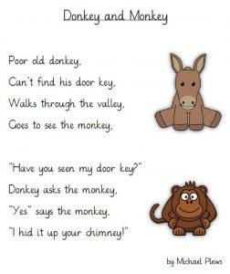 donkeymonkey